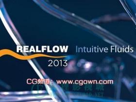 RealFlow 2013 (Win64) 绝对完美破解-免费下载