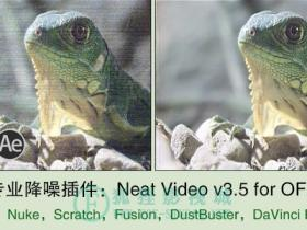 专业降噪插件:Neat Video v3.5 for OFX(适用:Nuke,Fusion,达芬奇)