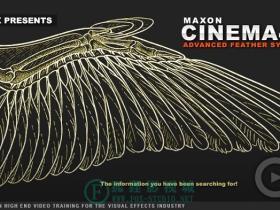 cmiVFX –  C4D照片级羽毛制作 Cinema 4D Advanced Feather Systems