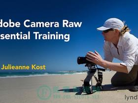 Lynda – Adobe Camera Raw Essential Training 基本训练 (updated Jun 21, 2016)