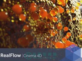 [WIN免破解]Realflow for Cinema4D v1.0.0.0080 WIN免破解版 NextLimit Realflow for Cinema4D v1.0.0.0080 WINONLY MUS3