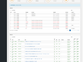 VipSystem Pro 用户查询扩展功能