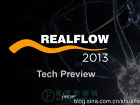 RealFlow 2013伦敦发布会Preview Event London