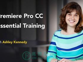 Lynda – Premiere Pro CC Essential Training 基础训练 (2015) (updated Jun 21, 2016)