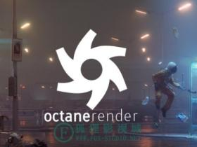 OC渲染器破解版 Octane Render 3.07 软件+C4D插件+预设材质库